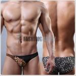 Leopard Mesh Transparent Bikini Men's Underwear
