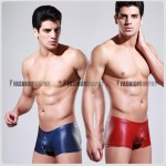 Wild Leather Trunk Men's Underwear